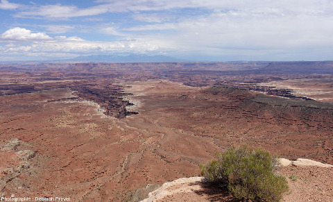 Autre reculée du Parc national de Canyonlands, vue depuis Grand View Point Road