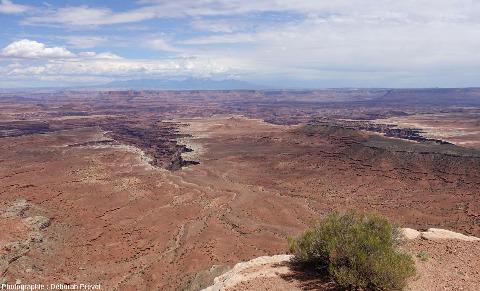 Autre reculée du Parc national de Canyonlands, vue depuis Grand View Point Road