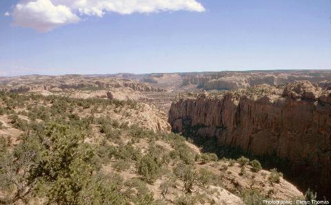 Vue sur la vallée de Betatakin qui entaille un secteur le plateau du Colorado (Arizona)