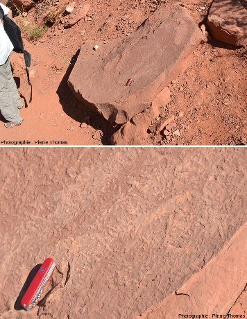 Vue d'ensemble d'une dalle de grès effondrée du sommet de la moitié supérieure d'une butte témoin (formation Organ Rock, De Chelly, Moenkopi ou Shinarump)