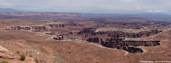 Vue d'ensemble sur un secteur de Canyonlands National Park qui permet de comprendre comment l'érosion fait reculer une cuesta et peut isoler des reliques, appelées mésas ou buttes témoins selon leur taille