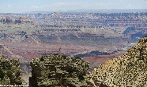 Vue sous un autre angle du même secteur que les images précédentes, Grand Canyon du Colorado, Arizona (USA)