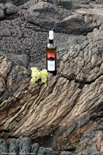 Bouteille de vin local et une grappe du cépage Verdelho posées sur le substratum d'un currais constitué de lave cordée, ile de Pico, Açores