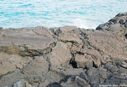 Détail de la surface cordée d'une coulée dans la région de Criação Velha, ile de Pico, Açores
