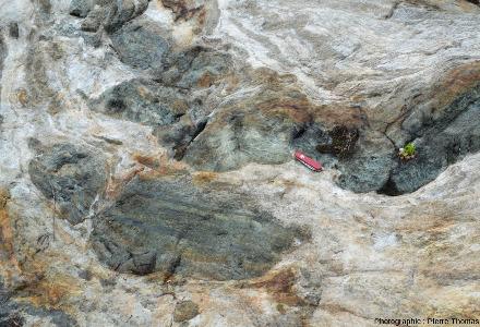Détail d'un gros bloc situé entre deux parcelles de vigne montrant comment un niveau basique peut être étiré, schistosé et boudiné par la tectonique, Vallée d'Aoste, Italie