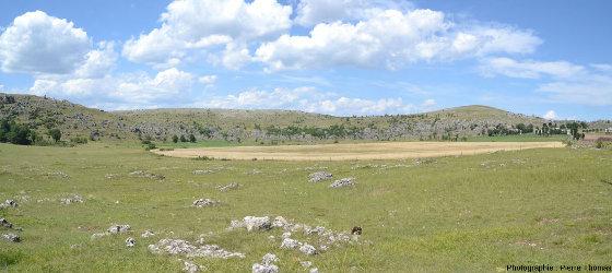 Paysage caractéristique des Grands Causses, en Lozère