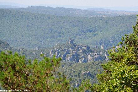 Pinacles dolomitiques dépassant d'une forêt de chênes et de pins du Causse Noir