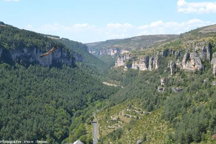 Un paysage caractéristique des gorges de la Jonte: calcaires plus ou moins dolomitiques formant une falaise dominant des niveaux plus marneux à pente moins raide