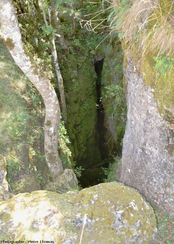 Entrée d'un aven sur le Causse Noir, aven situé près de la ferme de Dargilan (commune de Meyrueis, Lozère) et creusé dans des dolomies du Bathonien supérieur