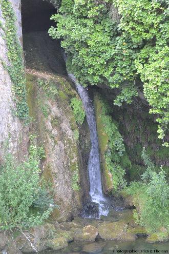 Gros plan sur la grotte d'où sort l'eau de la source de Briance en période de basses eaux (juillet 2018)