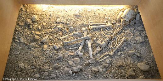 Reconstitution de la tombe de l'Homme de la Chapelle-aux-Saints (Corrèze), reconstitution présentée au Musée de l'Homme de Néandertal