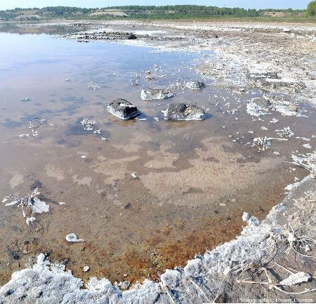 Vue sur le fond de l'étang de Lavalduc dans son état du 17 septembre 2018