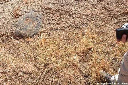 Enclave basique dans le granite du Spitzkoppe (Namibie), qui montre une indiscutable participation mantellique à l'origine de ce granite contemporain de l'ouverture de l'Atlantique