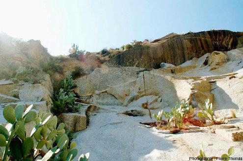 Vue générale de la carrière de granodiorite à San Piero in Campo (ile d'Elbe, Italie) montrant une structure dendromorphe à tourmaline