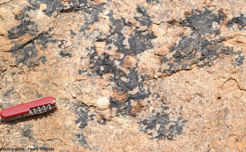 Cœur d'un filon étroit horizontal à tourmaline, granite de l'Erongo (Namibie)