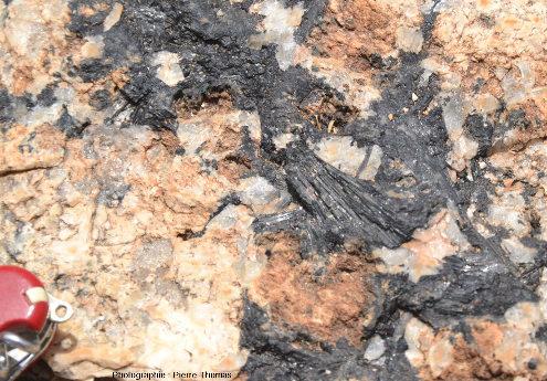 Tourmaline au cœur d'un filon étroit horizontal à tourmaline, granite de l'Erongo (Namibie)
