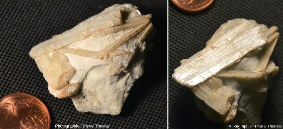 Cristaux tabulaires de wollastonite ramassés en bas de la falaise du Cap de Norsi, là où altération et érosion marines enlèvent préférentiellement le calcaire et mettent la wollastonite en valeur