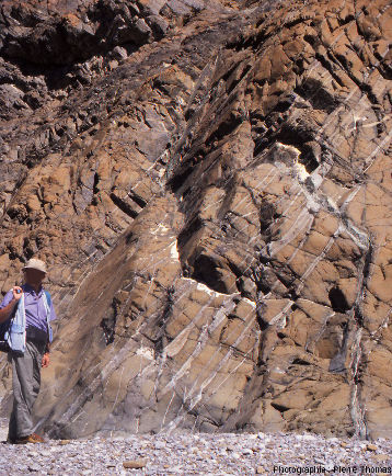 Étroits filons de gabbro recoupant la harzburgite du wadi Bani Kharus, Oman