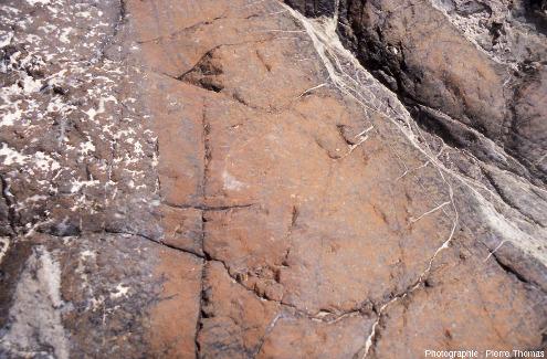 Zoom sur un filon de gabbro recoupant la harzburgite du wadi Bani Kharus, Oman