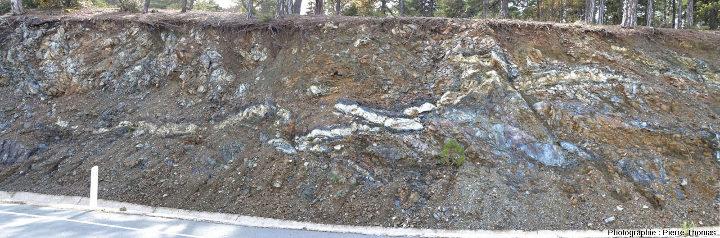 Poches et amas gabbroïques (roche claire) entourés de dunite (roche noire) au sein d'une harzburgite (roche orangée et grisâtre), dunite et harzburgite étant relativement serpentinisées, Troodos, Chypre