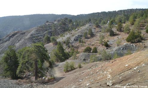 Paysage près du village de Troodos (Chypre) caractéristique des «montagnes de serpentinite», roche tendre qui s'érode un peu comme des argilites