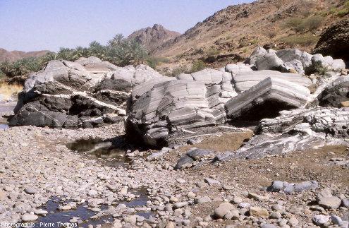 Affleurement de gabbros lités au fond du lit du wadi Haylayn, ophiolite d'Oman