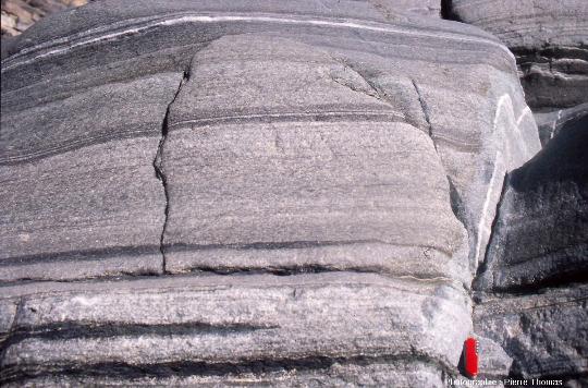 Gabbros lités du wadi Haylayn, ophiolite d'Oman