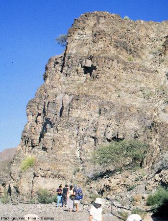 Paroi du wadi Haymiliyah, ophiolite d'Oman, montrant la grande épaisseur des gabbros lités, ici avec des lits globalement horizontaux