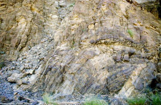 Pli (slump probable) de grande taille affectant les gabbros lités du wadi Haymiliyah, Oman