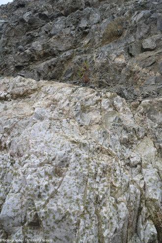 Le plagiogranite de Palaiomylos, ophiolite de Chypre, au contact de gabbros isotropes
