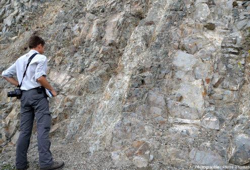 Filons particulièrement hydrothermalisés au sein du cortège filonien de l'ophiolite de Chypre