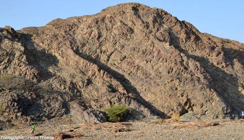 Cortège filonien ophiolitique près de Ghuzayn, Oman