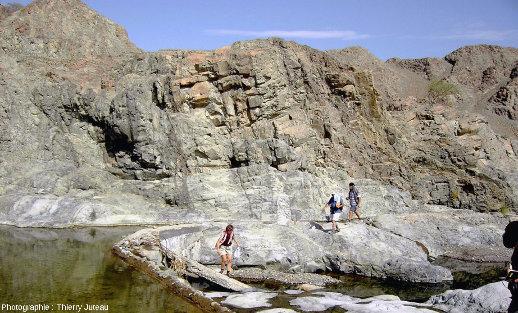 Le cortège filonien tel qu'on peut le découvrir dans la vallée du wadi Haymiliyah, ophiolite d'Oman