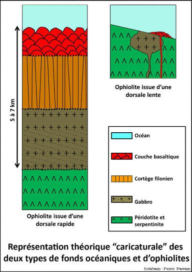 Schémas théoriques très simplifiés des deux types extrêmes de fonds océaniques et d'ophiolites: les fonds océaniques issus de dorsales rapides (à gauche) ou lentes (à droite)