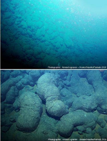 Une pente actuelle tapissée de basaltes en coussins sur la dorsale Est-Pacifique, 15°N, vues d'ensemble et de détail