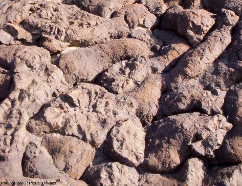 Détail sur la fracturation rayonnante interne des coussins de lave, affleurement «Geotimes» (Oman)