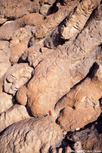 """Intersection entre la surface et le réseau de fracturation interne des pillow lavas, affleurement """"Geotimes"""" (Oman)"""