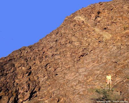 """Les basaltes en coussins de l'affleurement «Geotimes» (Oman), vus en """"coupe transversale"""""""