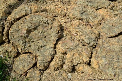 Détail d'un coussin de lave particulièrement bien pédonculé, Kato Moni, ophiolite de Chypre
