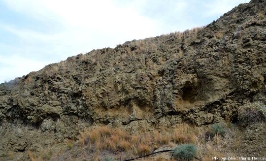 Détail des cavités à bordures prismées de la falaise près de Malounta (Chypre)