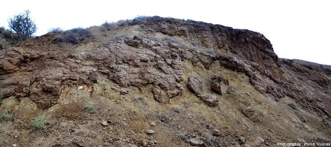 Affleurement à terres d'ombre (sédiments siliceux riches en oxydes métalliques) moulant des pillow lavas et s'insinuant dans les fissures et vides inter-pillows, région de Marki, ophiolite de Chypre