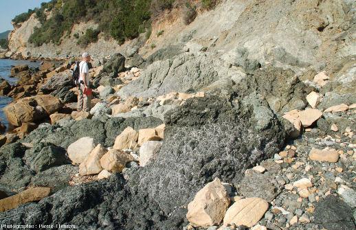 Vue d'ensemble sur les brèches serpentineuses situées sous les argiles turbiditiques de la côte Sud de l'ile d'Elbe