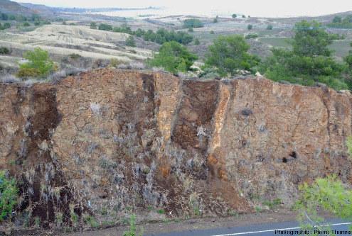 Empilement de basaltes en coussins recoupés par des filons de basalte, Linou, ophiolites de Chypre