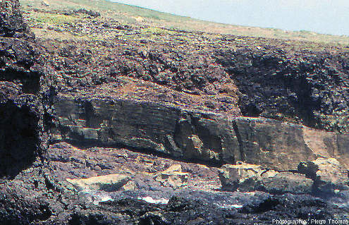 Vue de détail des ophiolites de la pointe Est de La Désirade, Guadeloupe
