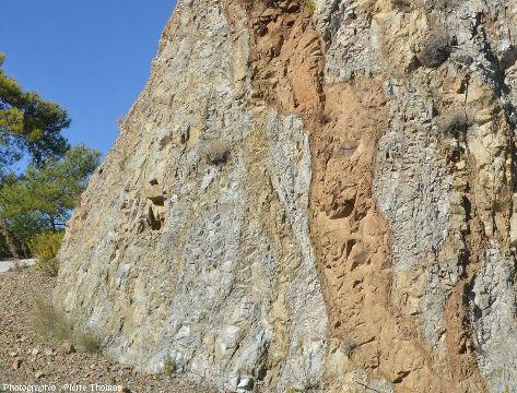 Zoom sur des filons de basalte (colorés en brun par l'hydrothermalisme) recoupant un cortège filonien plus ancien, au Sud d'Arakapas dans l'ophiolite de Chypre