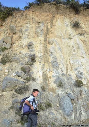 Filon de basalte (coloré en brun par l'altération hydrothermal) recoupant des gabbros isotropes près de Chandria, ophiolite de Chypre