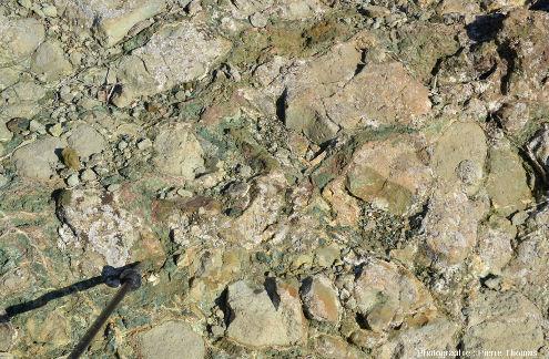 Détail de ces pillows hydrothermalisés verdâtres, près de Kampia (Chypre)