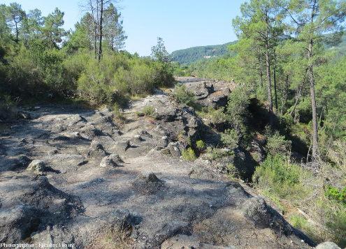 Surface d'une strate de grès triasique recouverte de «tétines», Vernon (Ardèche)
