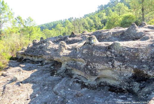 Vue en coupe verticale d'une strate de grès triasique recouverte de «tétines» permettant d'observer la persistance verticale du différentiel d'érosion
