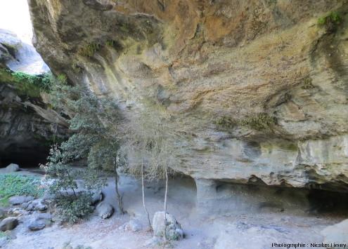 Affleurement de grès triasiques sur la rive gauche de la cascade du Baumicou (Ardèche)